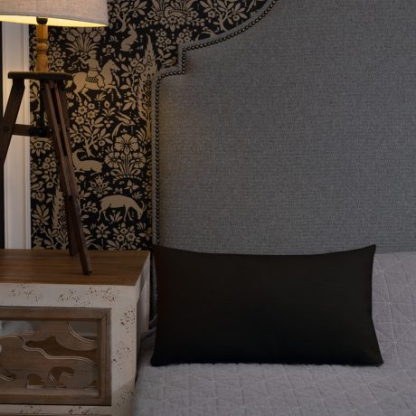all-over-print-premium-pillow-20×12-back-lifestyle-2-60c0fe3a35d86.jpg