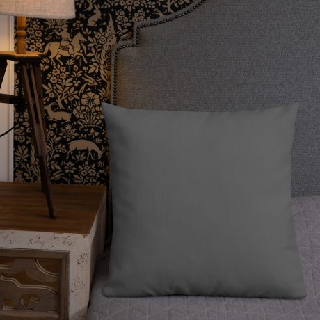 all-over-print-premium-pillow-22×22-back-lifestyle-2-60c100b5b44fb.jpg